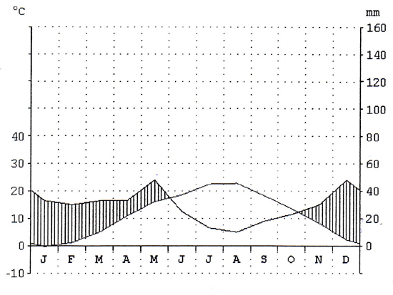 Klimadiagramm über ein Jahr mit Niederschlag und Temperaturwerten
