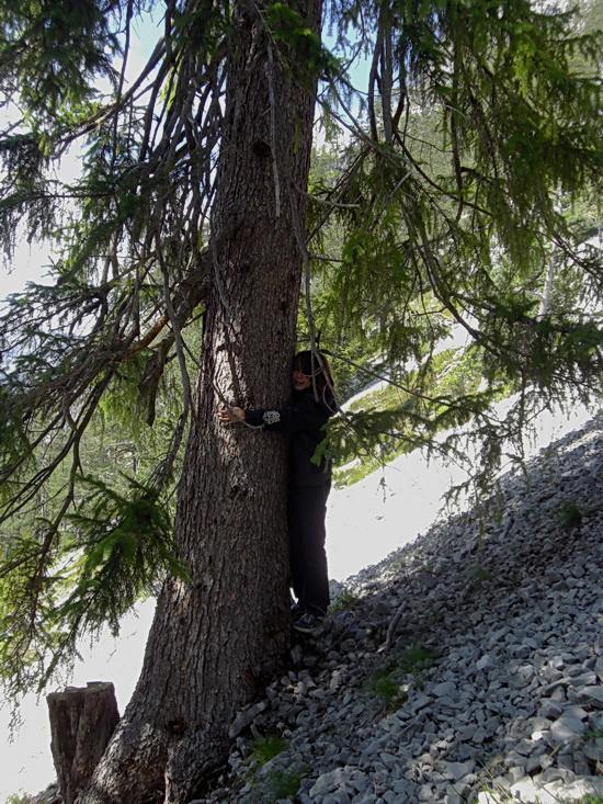 Unser Sohn umarmt einen Baum auf unserem Ausflug zur Eisriesenwelt Werfen