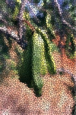 verfremdetes Foto von der Frucht eines Johannisbrotbaums