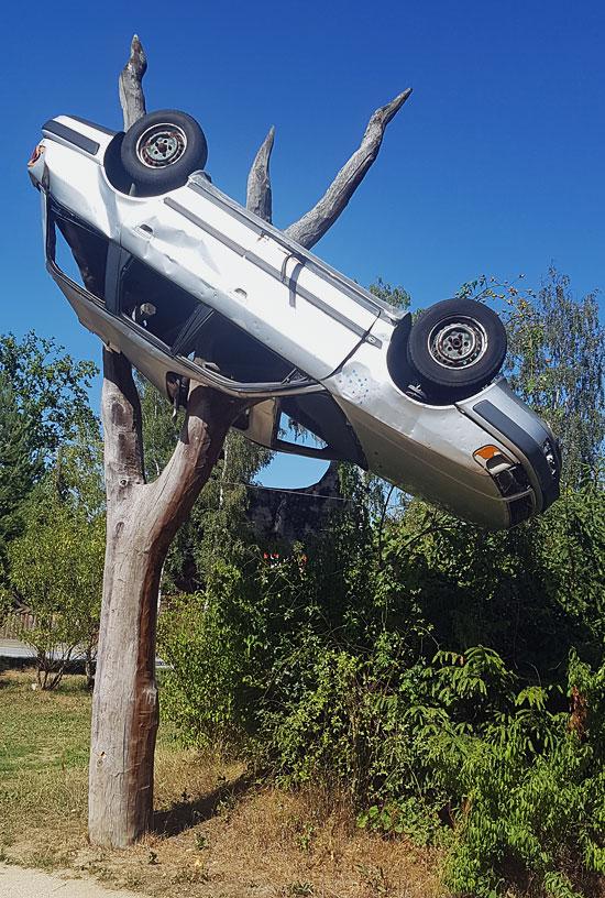 Foto eines AUtos, das auf einen Baum aufgespießt wurde