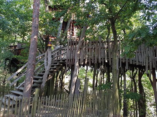 Foto von den Holzstegen, die zu den Baumhäusern führen